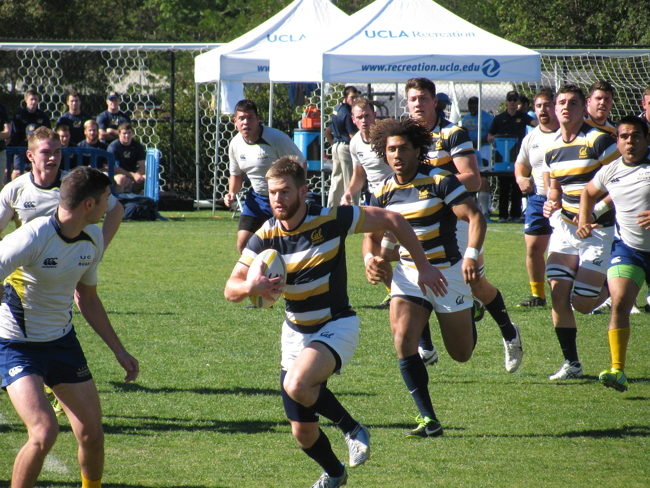 rugby-1323586_1280